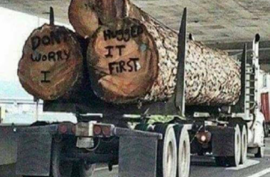 Reminder: We are always very committed to 100% sustainable forestry! (with a funny picture to share)