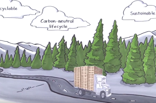Nature's Packaging Video – Choose The Sustainable Way